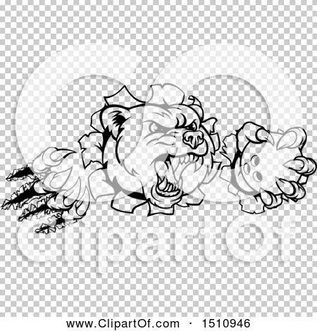 Transparent clip art background preview #COLLC1510946