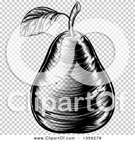 Transparent clip art background preview #COLLC1356278
