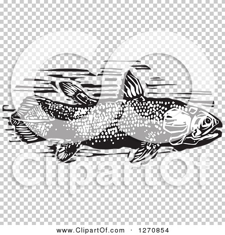 Transparent clip art background preview #COLLC1270854