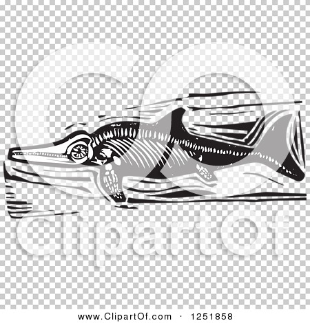 Transparent clip art background preview #COLLC1251858