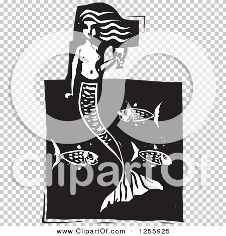 Transparent clip art background preview #COLLC1255925
