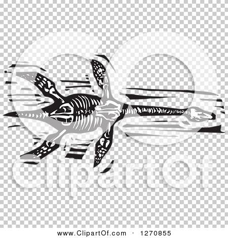Transparent clip art background preview #COLLC1270855