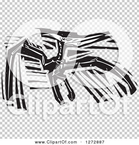 Transparent clip art background preview #COLLC1272887