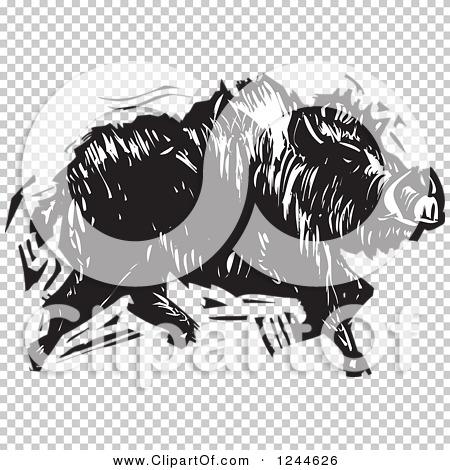Transparent clip art background preview #COLLC1244626