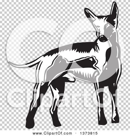 Transparent clip art background preview #COLLC1373815