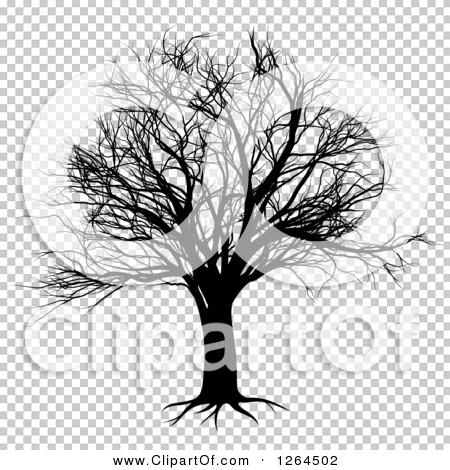 Transparent clip art background preview #COLLC1264502