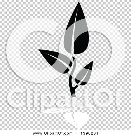 Transparent clip art background preview #COLLC1396201