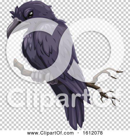 Transparent clip art background preview #COLLC1612078
