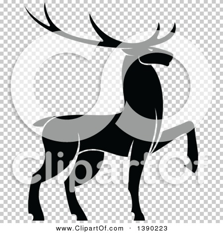 Transparent clip art background preview #COLLC1390223