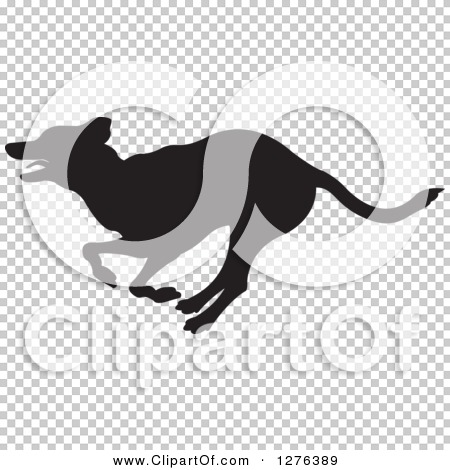 Transparent clip art background preview #COLLC1276389