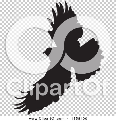 Transparent clip art background preview #COLLC1358400