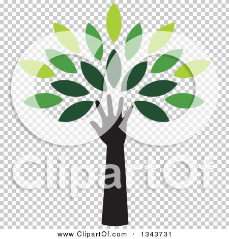 Transparent clip art background preview #COLLC1343731