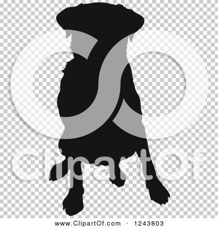 Transparent clip art background preview #COLLC1243803