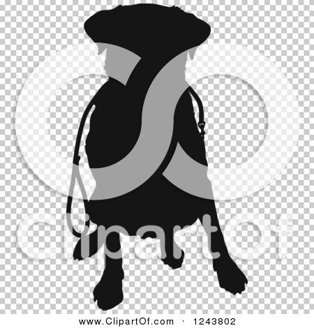 Transparent clip art background preview #COLLC1243802