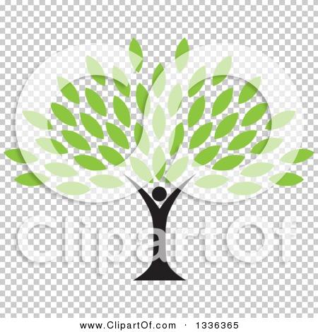 Transparent clip art background preview #COLLC1336365