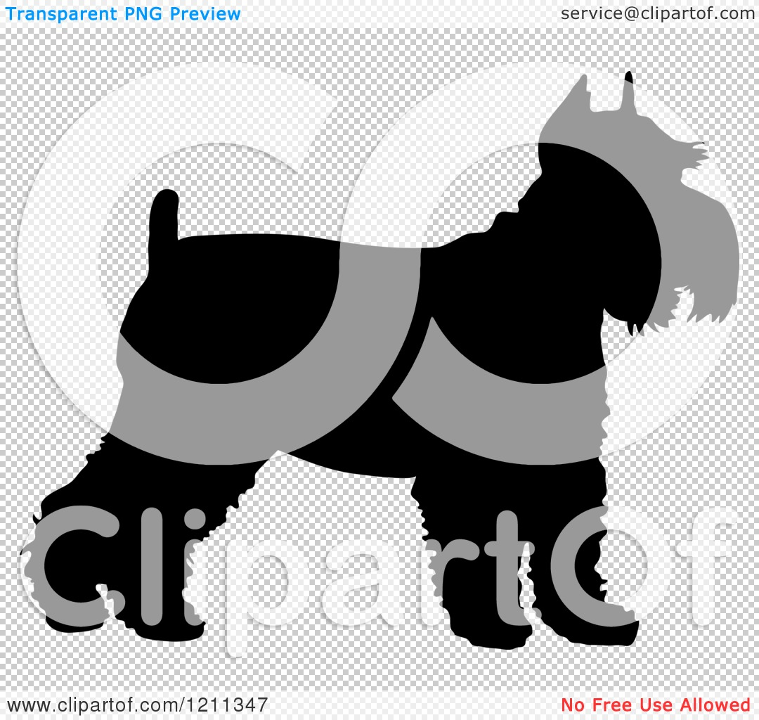 Clipart of a Black Silhouetted Schnauzer Dog in Profile - Royalty ...