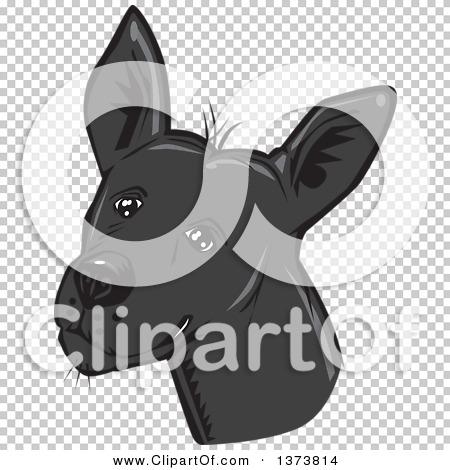 Transparent clip art background preview #COLLC1373814
