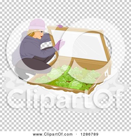 Transparent clip art background preview #COLLC1286789