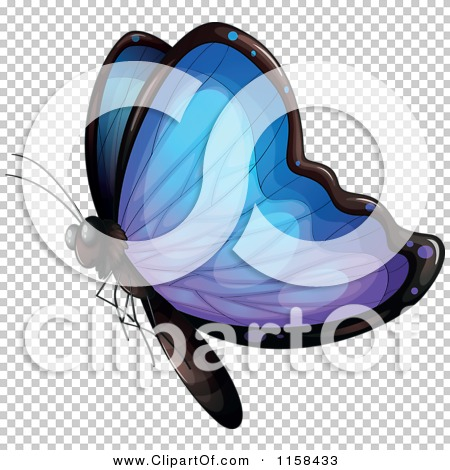 Transparent clip art background preview #COLLC1158433