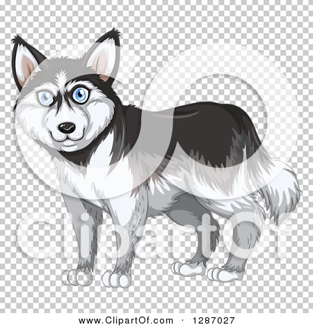 Transparent clip art background preview #COLLC1287027