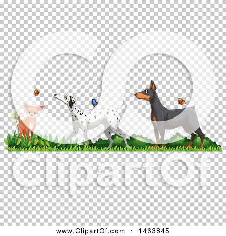 Transparent clip art background preview #COLLC1463845