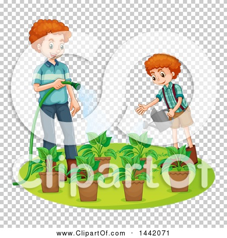 Transparent clip art background preview #COLLC1442071