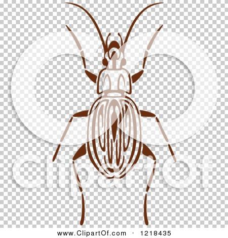 Transparent clip art background preview #COLLC1218435