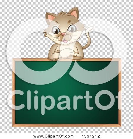 Transparent clip art background preview #COLLC1334212