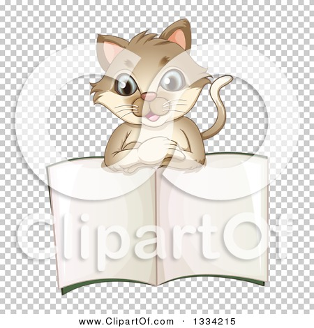 Transparent clip art background preview #COLLC1334215