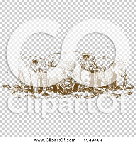 Transparent clip art background preview #COLLC1349484