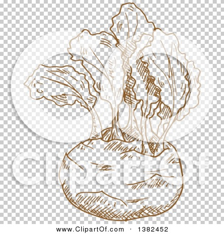 Transparent clip art background preview #COLLC1382452