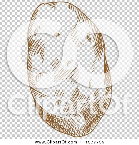 Transparent clip art background preview #COLLC1377739