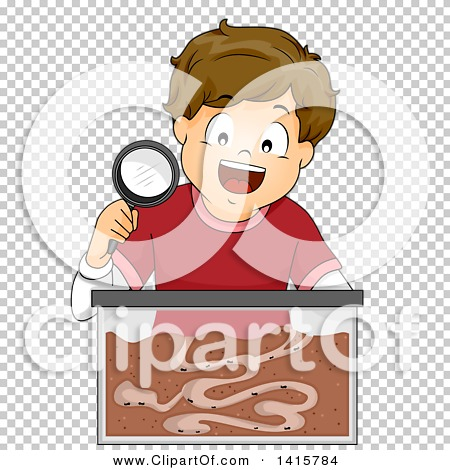 Transparent clip art background preview #COLLC1415784
