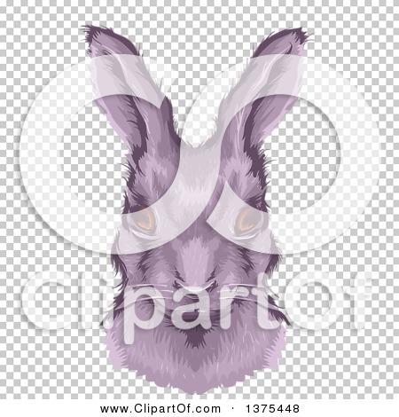 Transparent clip art background preview #COLLC1375448