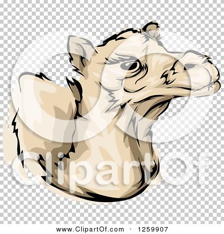 Transparent clip art background preview #COLLC1259907