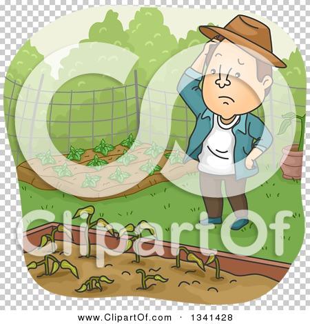 Transparent clip art background preview #COLLC1341428