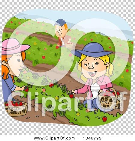 Transparent clip art background preview #COLLC1346793