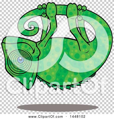 Transparent clip art background preview #COLLC1448102