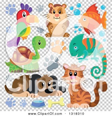 Transparent clip art background preview #COLLC1318310