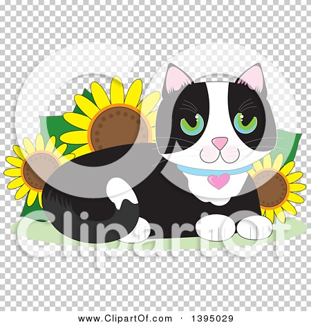 Transparent clip art background preview #COLLC1395029