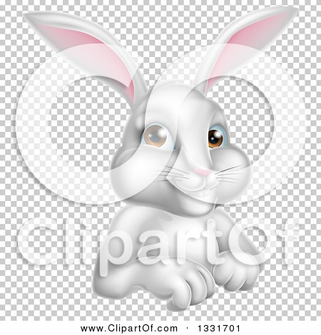 Transparent clip art background preview #COLLC1331701