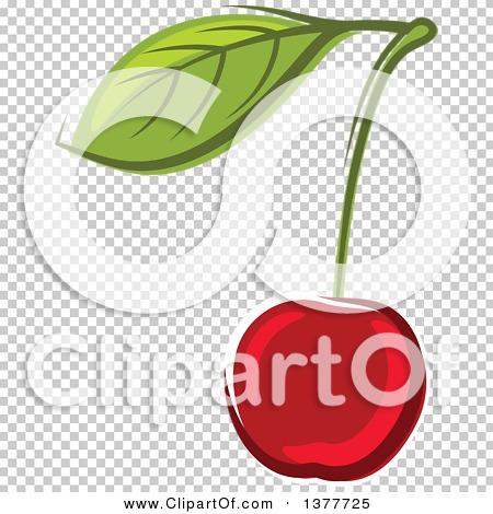 Transparent clip art background preview #COLLC1377725