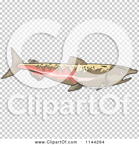 Transparent clip art background preview #COLLC1144264