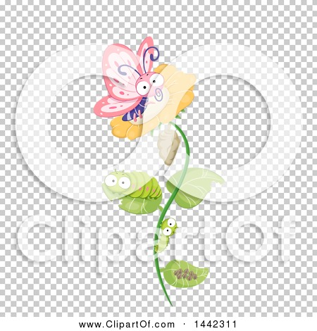 Transparent clip art background preview #COLLC1442311