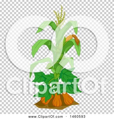 Transparent clip art background preview #COLLC1460593