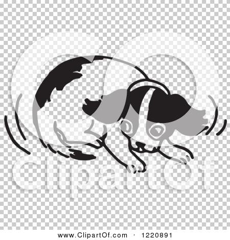 Transparent clip art background preview #COLLC1220891