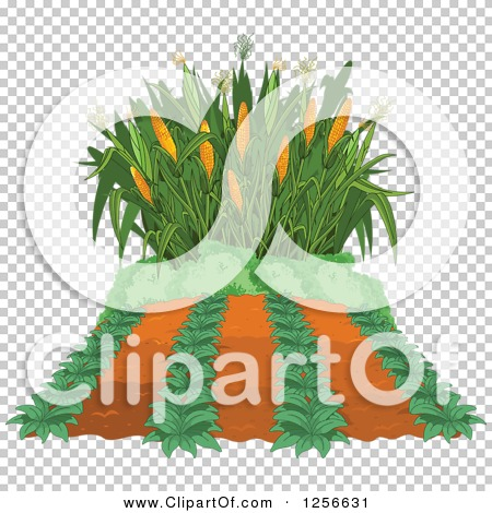 Transparent clip art background preview #COLLC1256631