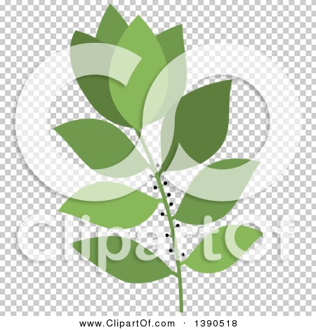Transparent clip art background preview #COLLC1390518