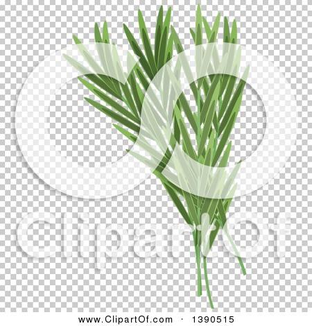 Transparent clip art background preview #COLLC1390515