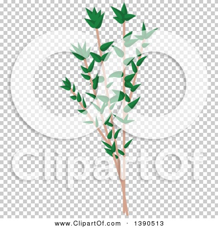 Transparent clip art background preview #COLLC1390513